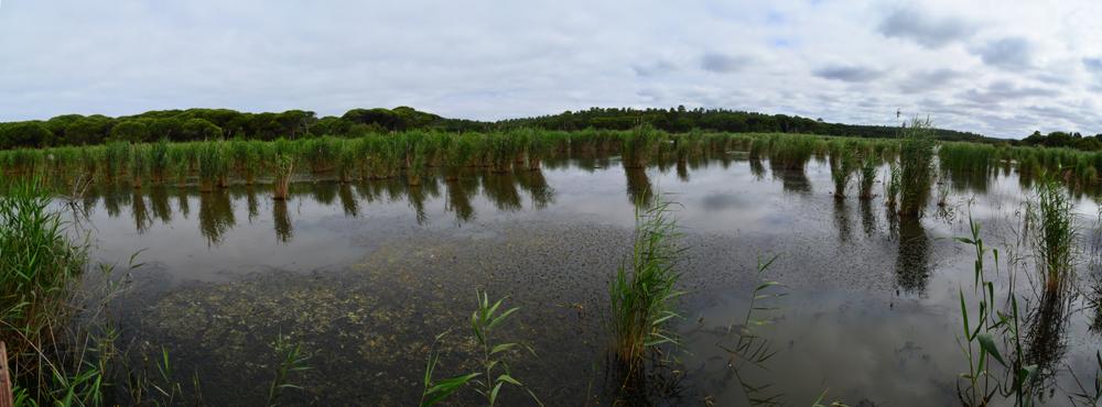 Lagoa Pequena, Sesimbra