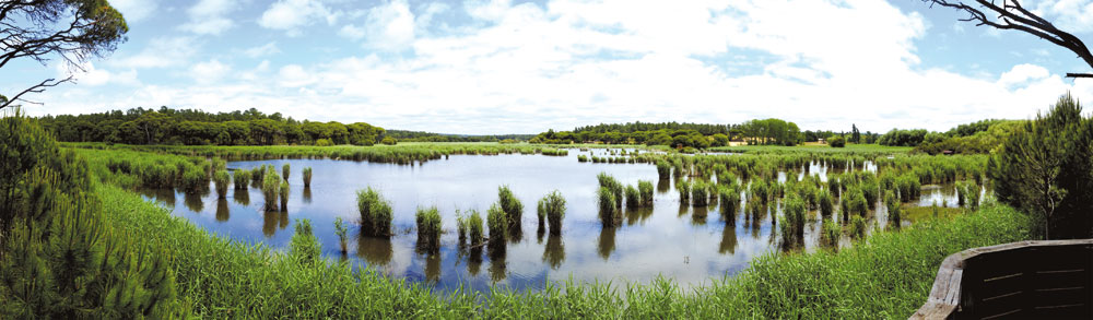 lagoa-panoramica