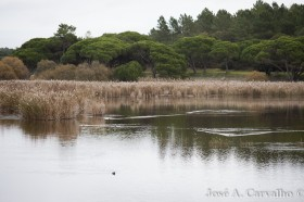 Lagoa Pequena