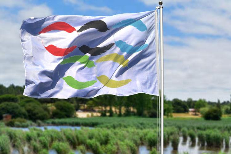 Jogos Olímpicos das Aves (Lagoa)